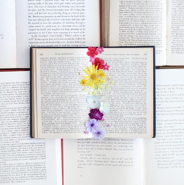 Книги четене 4