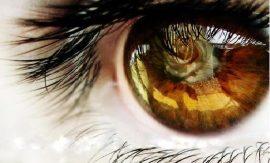 30 любопитни факта за очите