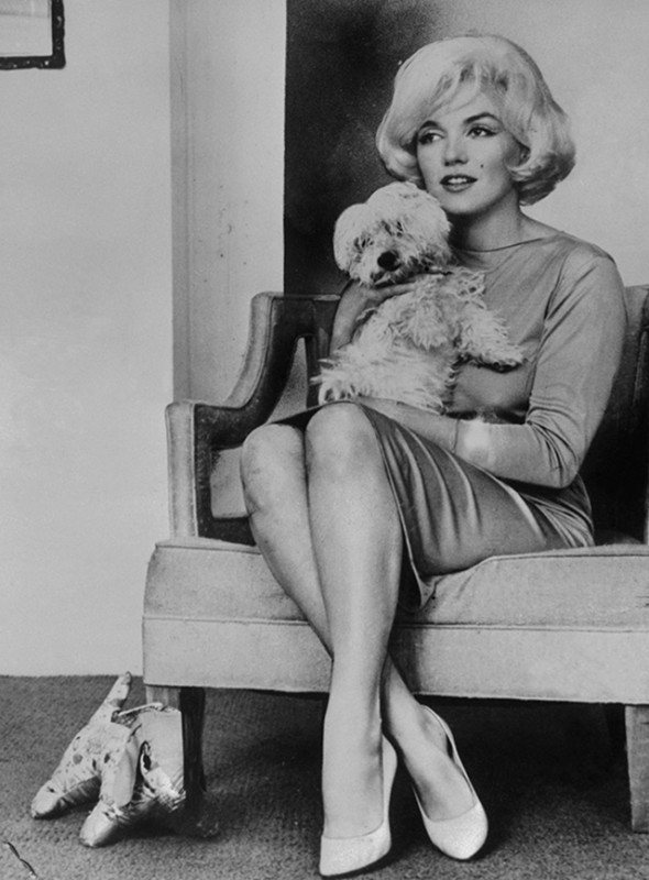 Marilyn Monroe and Maf