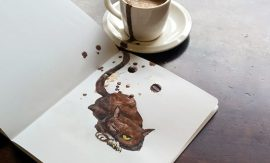 Котки от кафе на Елена Ефремова