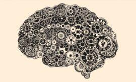 Какво е интелигентността?