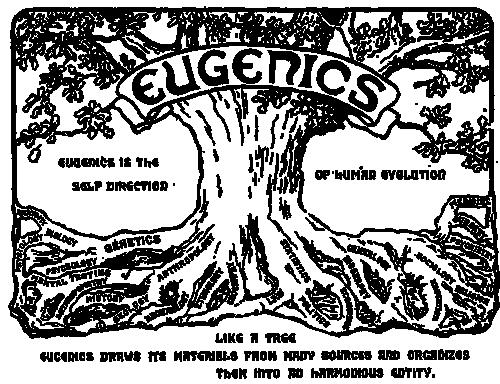 """""""Евгениката е самонасочване на човешката еволюция"""" – лого на Втория международнен конгрес по евгеника, проведен през 1921 г., изобразяващ дърво, което обединява различни клонове на науката."""