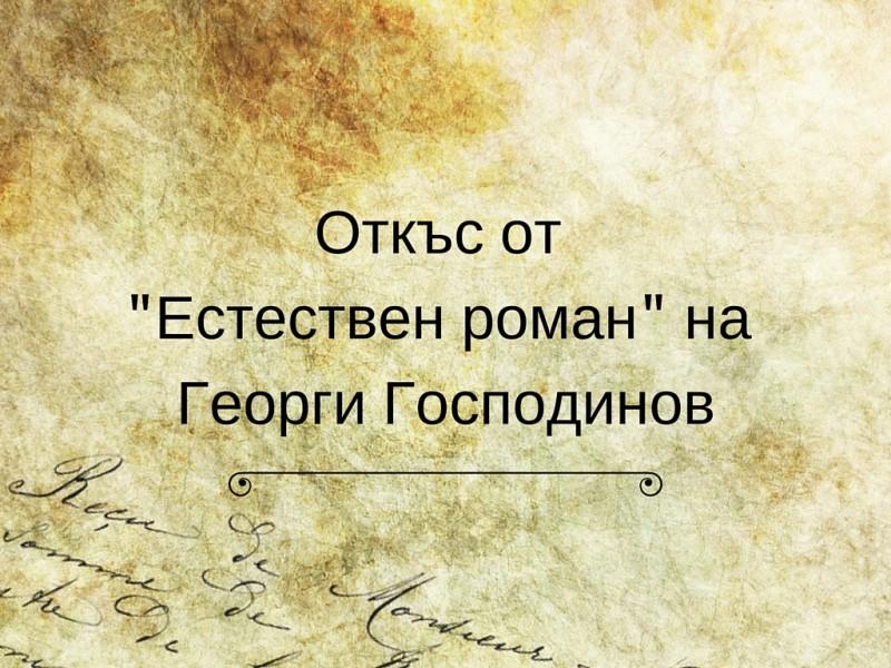 Откъс от -Естествен роман- на Георги Господинов (1)