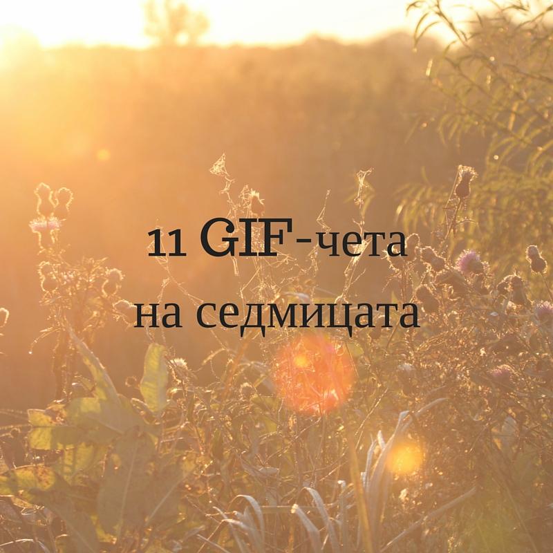 11 GIF-чета на седмицата (1)