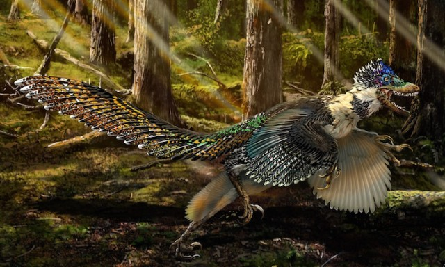 1_dino-discovery-wcth03-640x384