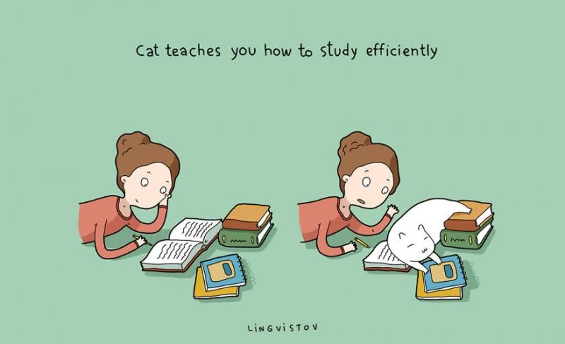 21-Benefits-of-Having-a-Cat-Book2__880