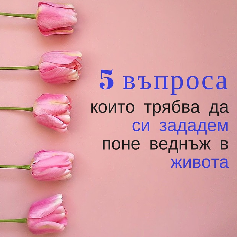 5 въпроса