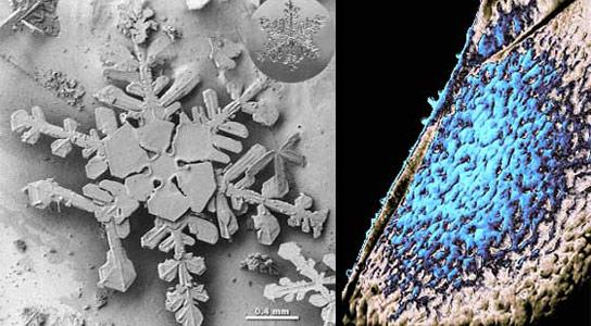 Goddard-Lab-Works-on-Cosmic-Ice