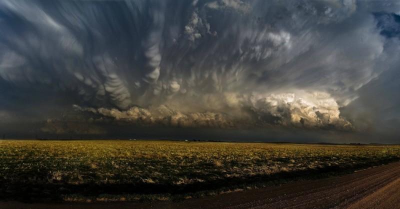 Nature_Photos_22