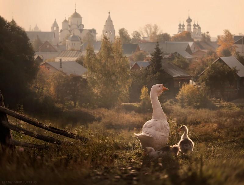 fairy-tale-villages-18-57221a79bb869__880