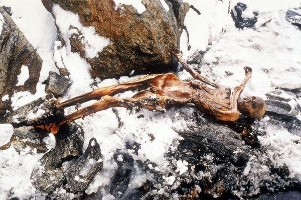 iceman-oetzi-otzi-reconstructed-body_32527_600x450