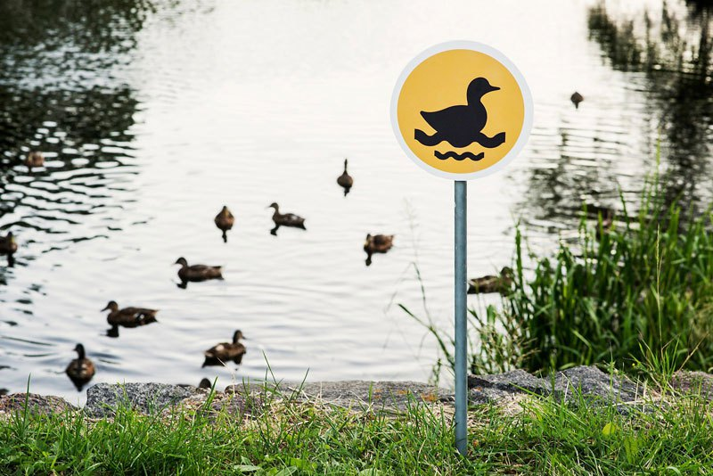 tiny-road-signs-erected-to-remind-city-residents-animals-live-there-too-by-clinic-212-5